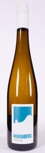 Sächsischer Riesling vom Weingut Mariaberg