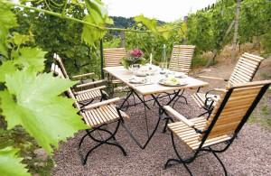 Weinbergsterrasse im Weingut Mariaberg